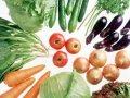 怎么识别被农药污染蔬菜