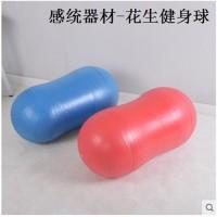 幼儿园儿童加厚防爆健身球感统训练器材康复平衡按摩球
