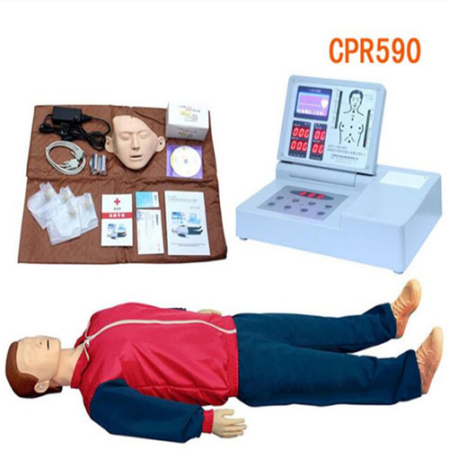CPR590医用急救人体模型