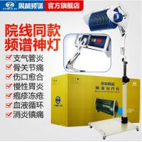 周林频谱仪治疗仪WS-311烤灯理疗仪